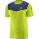 Salomon M's Fast Wing SS Tee acid lime